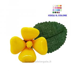 Piccola primula gialla Fiore di Confetti William Di Carlo Sulmona - Italy