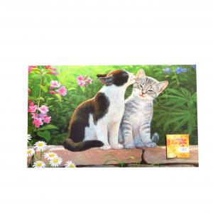 Tappeto fuoriporta 45x75 2 gatti