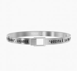 Questa è La Mia Vita - Ligabue Official Collection