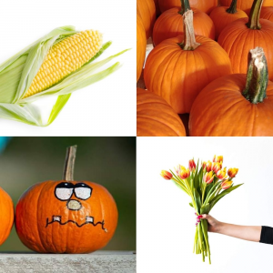 Kit divertimento d'autunno MEDIUM #zuccheditulipania