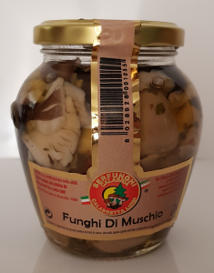 Serfunghi Funghi di Muschio