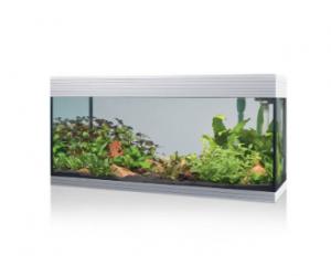 Askoll Pure kit XL Bianco - kit acquario cm 76x36x43,5h 94 litri dotato di illuminazione LED e sistema di filtraggio