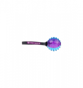 GIOCO GIGWI REGULAR BALL PUSH