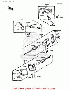 Lente Lampeggiatore Posteriore SX Kawasaki ZX10