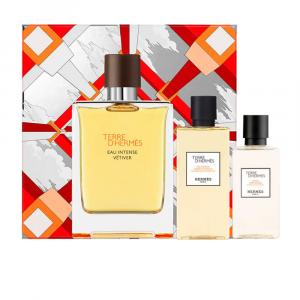 Hermès Hermes Terre Eau De Toilette 100ml Desodorante Stick 25g Balsamo Para Despues Del Afeitado 40ml