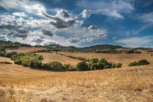 Franciacorta, hills&wine