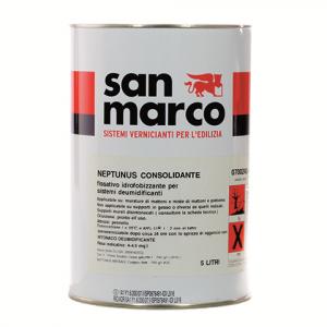 NEPTUNUS CONSOLIDANTE/SIL-TECH CONSOLIDANTE