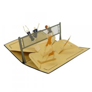 Biglietto augurale gioco pallavolo Origamo di carta