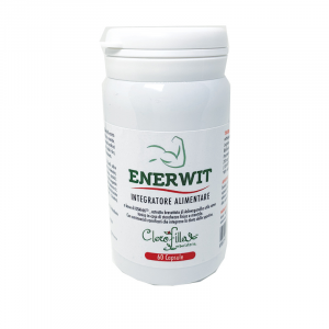 EnerWit