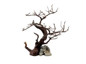 Wood Rock Black  26cm x 22cm x 32cm ASKOLL