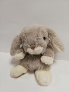 Coniglio color grigio chiaro di Bukowski