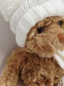 orso con cappuccio panna