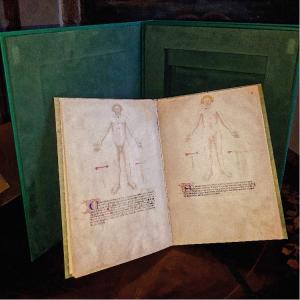 Il libro del cauterio di Padova