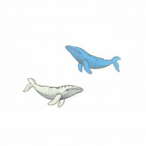 Tatuaggio temporaneo Balena