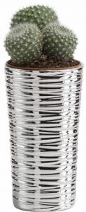 vaso natura conico alto 10,5