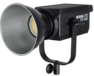 FS-300 Luce Led Spot Daylight 350W 5600K
