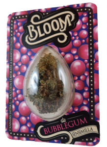 742-29 BLOOM BUBBLEGUM 1GR