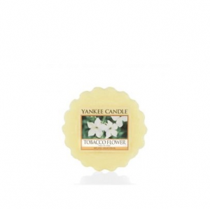 Yankee Candle - TOBACCO FLOWER - TARTINA