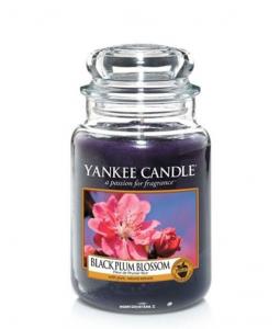 Yankee Candle - BLACK PLUM BLOSSOM - GIARA GRANDE