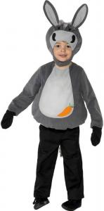 Costume Asinello