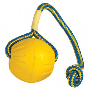 Pallina Swing 'n Fling Ball