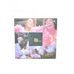 Vinyl 33 Turns Greatest Hits