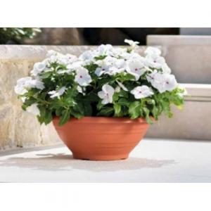 Veca Campana Ciotola 55 cm Color Terracotta Vaso da Giardino Per Fiori