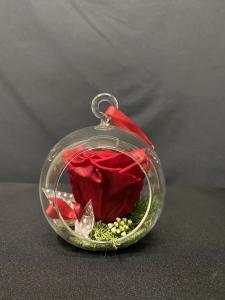 Rosa stabilizzata in boulle di vetro