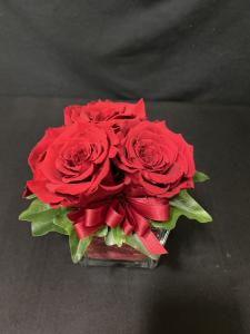 Rosa stabilizzata in vaso cubico