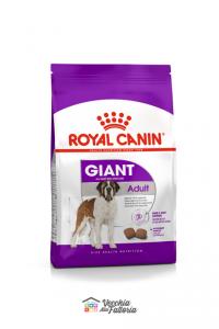 Royal Canin | Giant - Adult / 15kg
