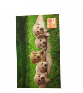 Zerbino tappeto decoro digitale cuccioli 45x75