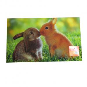 Zerbino tappeto decoro digitale conigli innamorati 45x75