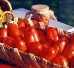 Pomodoro rosso - 500gr