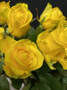 Mazzo di rose gialle a gambo medio - Scegli il numero di rose che vuoi