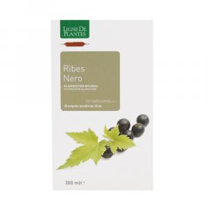Ribes Bio Macerato Acquoso in Ampolle Ligne De Plantes