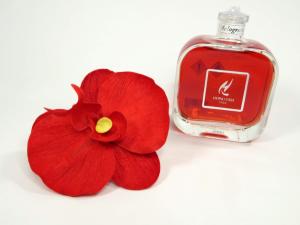 HYPNO profumatore orchidea cannella arancio 100ml