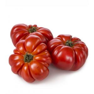 Pomodoro Costoluto - 1 Kg