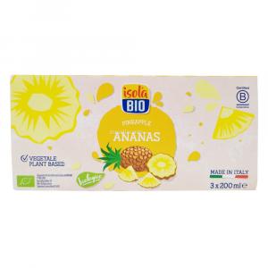 Succo di Ananas in Brick