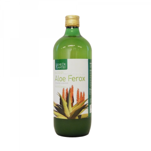 ALOE FEROX 1 LT  LIGNES DES PLANTES