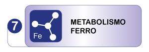 Test Metabolismo del Ferro