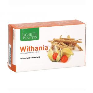 Withania Ligne de Plantes 15 Ampolle