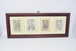 Quadro Stampa Raffigurante 4 Tipologie Di Erbe 60 X 24 Cm