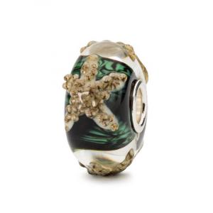 Trollbeads Beads Edizione Limitata, Stella di Mare