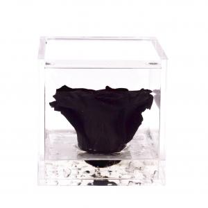 Flowercube rose stabilizzate colore black