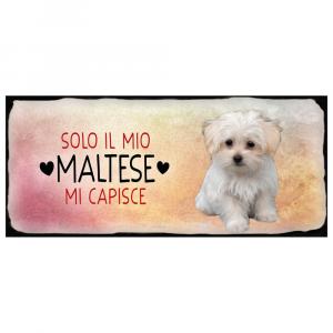 Placca in metallo cane Maltese