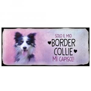 Placca in metallo cane Border Collie