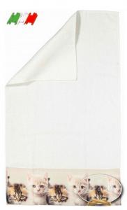 Asciugamani stampa digitale Gattini