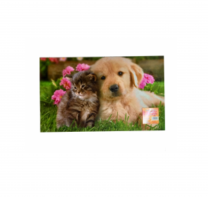 Zerbino digitale 45x75 cane e gatto insieme
