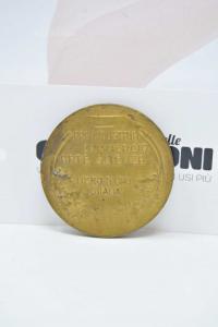 Medagli Pro Industria Commercio Arte Scienza Libro D'oro