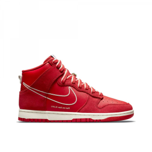 Nike Dunk Hi Se First Use